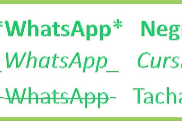 Nuevo WhatsApp